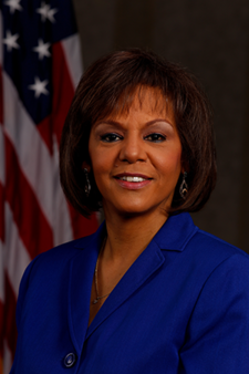 Robin Kelly, 113th Congress.png