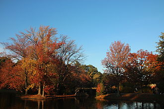 Roger Williams Park - Swan Boat Pond in Autumn