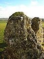Rollright Stones - panoramio - ian freeman (2).jpg
