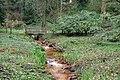 Rombergpark-100330-11300-Brücke.jpg