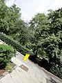 Roosevelt Monument 5 2012-07-08.jpg