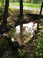 Rottmannsbach bb01.jpg