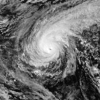 1988 Pacific typhoon season - Image: Roy Jan 12 1988 0600Z