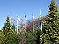 Royal York Hotel gardens - geograph.org.uk - 407833.jpg