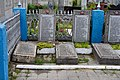 Rozhyshche Volynska-section of the mass graves of soviet soldiers-details-14.jpg