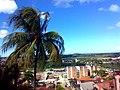 Rua Padre Anchieta - panoramio (1).jpg