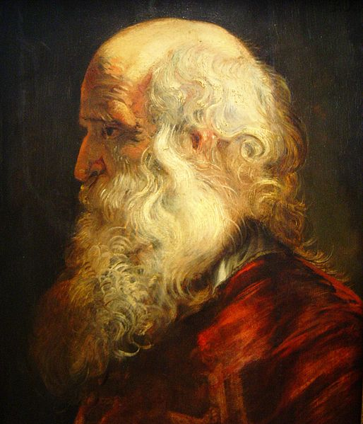 Archivo:Rubens old man dsc01655.jpg
