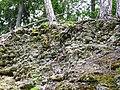 Ruine Greifenfels Südwesten 01.jpg