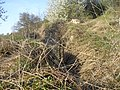 Ruinen Rote Welle2.JPG