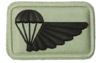 SANDF Air Supply badge embossed.png