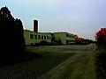 Samsite Bushes Wear Red - panoramio.jpg