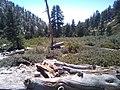 San Bernardino County, CA, USA - panoramio (13).jpg
