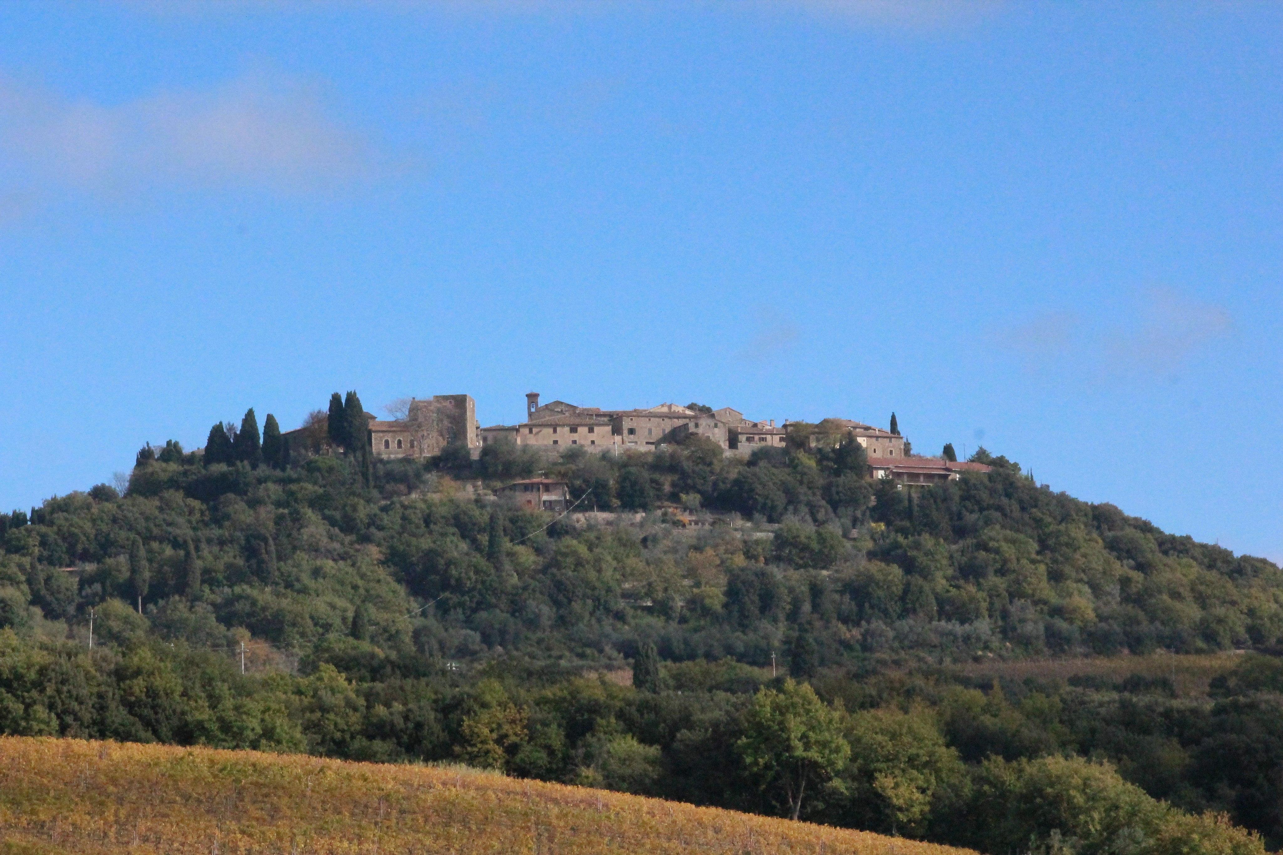 Panorama vonf Sant'Angelo in Colle, ein Ortsteilvon Montalcino