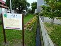 Sasazeki, Yamagata-Goseki.jpg
