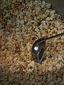 Schöpfkelle und Popcorn 2011.JPG