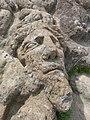 Sculpture sur les rochers de Rothéneuf.jpg