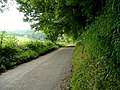 Secluded lane - geograph.org.uk - 1339202.jpg