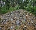 Selkäkangas cairn Nakkila Finland IMG 6562 65.jpg