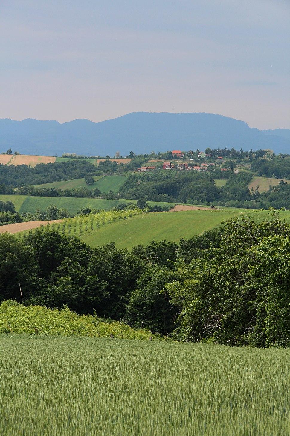 Selo Rabas - opština Valjevo - zapadna Srbija - Panorama 9