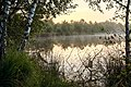 Senden, Venner Moor -- 2013 -- 2283-5.jpg