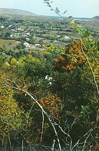 Severinovca commune (1980). (17113189440).jpg