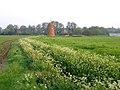 Shefford windmill.jpg