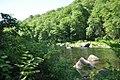ShelburneStateForest DeerfieldRiver.jpg