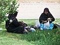 Shiraz, Iran (28566736842).jpg