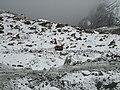 Siachen Glacier2.JPG