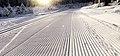 Skate skiing track.jpg