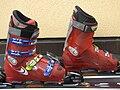 Ski boots alpin large.jpg