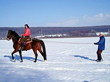 A woman on a brown horse pulls a man on skis