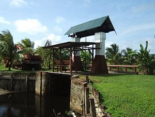 Agriculture in Suriname