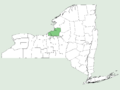 Smilax lasioneura NY-dist-map.png