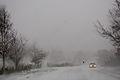 Snowy Driving.jpg
