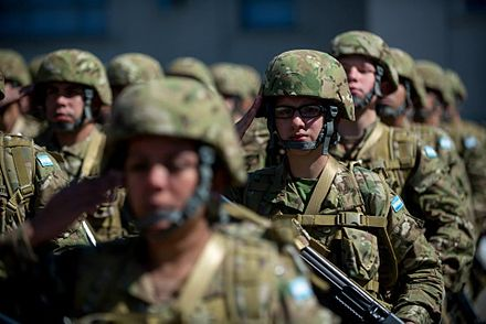 Soldiers of the Argentine Army in formation Soldados do exercito argentino 2016.jpg