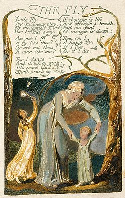Songs of Innocence and of Experience copy F object 48 THE FLY 1794.jpg