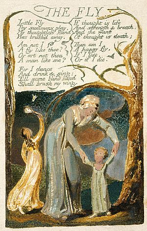 The Fly (poem) - Image: Songs of Innocence and of Experience copy F object 48 THE FLY 1794