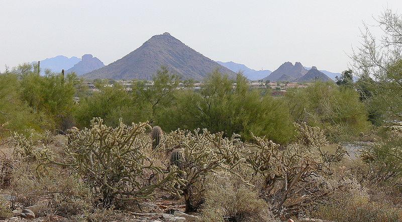 File:Sonoran Desert Scottsdale AZ 50349.JPG