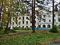 Sosnovaya Gorka san., Chelyabinskaya oblast', Russia, 456441 - panoramio.jpg