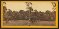 South Laurel Hill. March 1868, from Robert N. Dennis collection of stereoscopic views.png