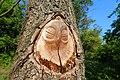 Sovičky v parku Bohumila Hrabala (1).jpg