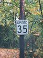 Speed35.jpg