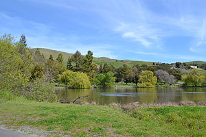 Ed R. Levin County Park - Spring Valley Pond