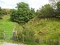 Sracleightreen Townland - geograph.org.uk - 1482701.jpg
