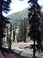 Srinagar - Pahalgam views 78.JPG