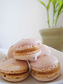 Stacked strawberry macaron parisien with lemon curd filing.jpg