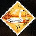 Stamp of Albania - 1975 - Colnect 331549 - Whooper Swan Cygnus cygnus.jpeg