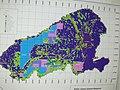 Starr-040217-0112-Tamarix aphylla-UXO clearance map-Base Camp-Kahoolawe (24605327691).jpg