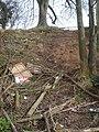 Steep slope at Ryall - geograph.org.uk - 764556.jpg